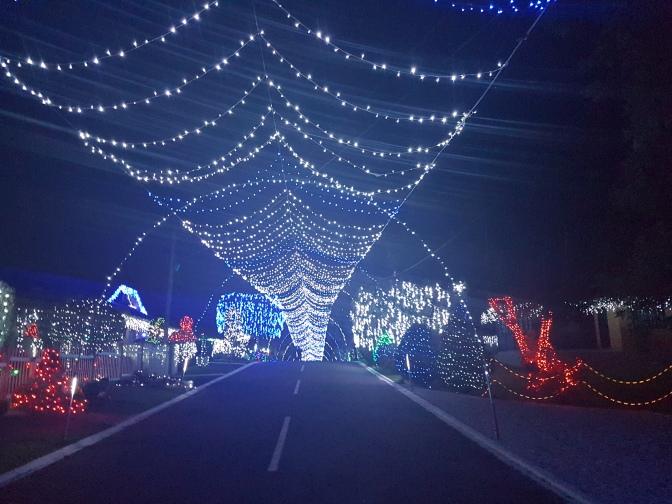 Programas de Natal para Curitiba